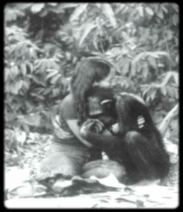 Chimp and Human Hugging